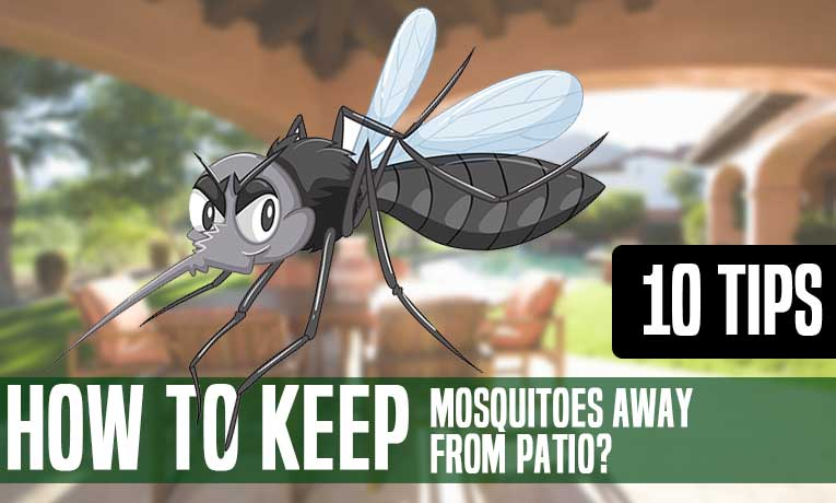 best way to keep mosquitoes away from patio