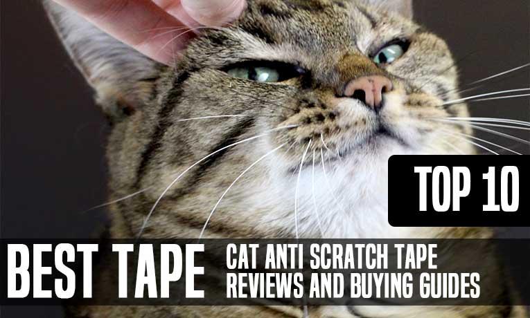 best Best Cat Anti Scratch Tape